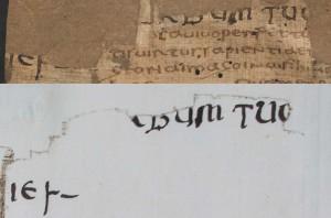 Nachtrag ÖNB Cod. 2160*, fol. 2v und ÖNB Cod. 9492, fol. 119r